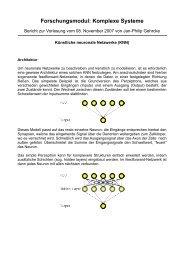 Forschungsmodul: Komplexe Systeme - Jan-Philip Gehrcke