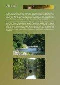 das schwimmende Tarnzelt - daniel montanus - Seite 3