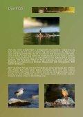 das schwimmende Tarnzelt - daniel montanus - Seite 4
