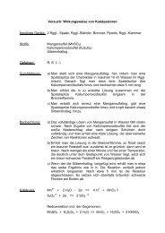 Wirkungseise von Katalysatoren - BiBe.de