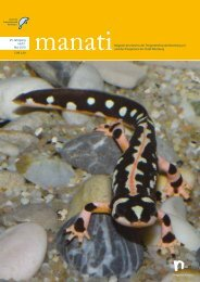 manatiMagazin des Vereins der Tiergartenfreunde Nürnberg eV und ...