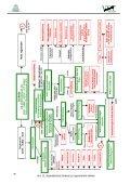 Übersicht zur Diagnose und Therapie von ... - VETimpulse - Seite 4