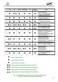 Übersicht zur Diagnose und Therapie von ... - VETimpulse - Seite 7