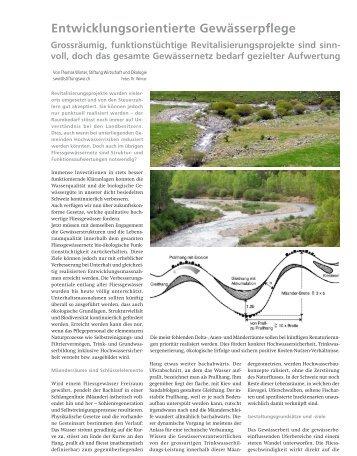 Qualitätsfaktoren eines Fliessgewässers - Stiftung Wirtschaft und ...