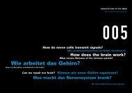 Wie arbeitet das Gehirn? - Túnel de la Ciencia