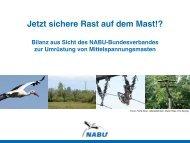 Jetzt sichere Rast auf dem Mast!? - Naturschutz-Akademie Hessen