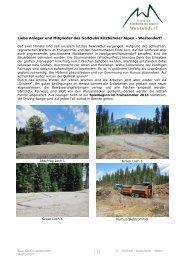 3. Newsletter 2012 zum Downloaden - Golfclub Kitzbüheler Alpen ...