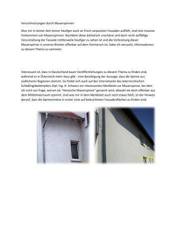 Verschmutzungen durch Mauerspinnen - Malerfachbetrieb Safranek
