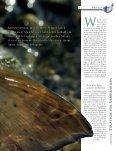 praxis praxis - Flyfishing by Jan Delaporte | www.flyfish-jandelaporte ... - Seite 2