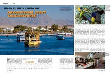 Presseartikel herunterladen (PDF - 745 KB) - The Breakers Diving ...