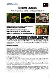 Expedition Neuguinea im NDR_PM - Ulla Lohmann