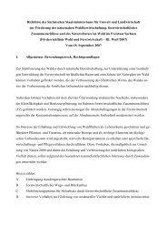 Förderrichtlinie Wald und Forstwirtschaft – RL WuF/2007