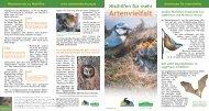 Nisthilfen für mehr Artenvielfalt - Naturschutzbund
