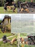 Mbua, Mbua! – Hund, Hund! - Schweizer Hunde Magazin - Seite 3