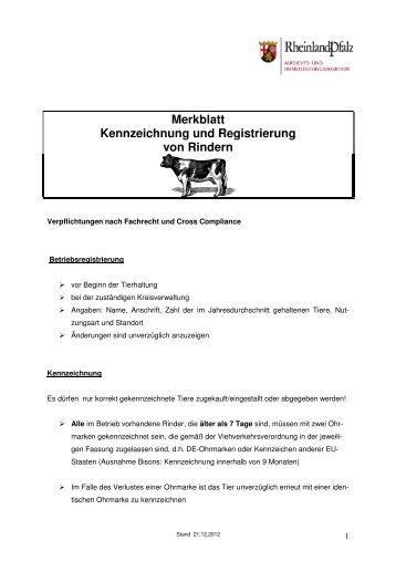 Merkblatt Rinder