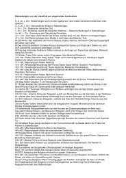 Geschichte Siebenbürgens - Die Dilettanten