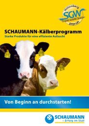 Download (pdf | 425,06 KB) - Schaumann
