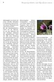 Zell – Sele - Gemeinde Zell - Seite 5