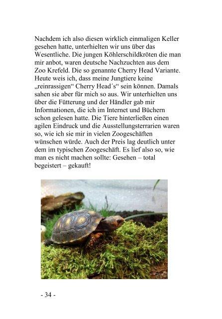 Im Revier meiner Köhlerschildkröten