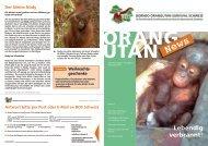 siehe Dezember Ausgabe der Orang-Utan-News - BOS Schweiz