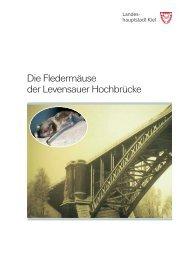 Die Fledermäuse der Levensauer Hochbrücke - Landeshauptstadt ...