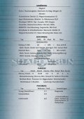 CHARAKTERDATEN – STEVEN ANGIER – SHADOWRUN 4A - Seite 4