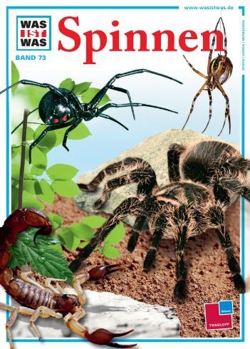 Spinnen - Die Onleihe