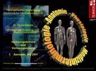 W. Weitensfelder Funktionelle Anatomie und Medizinterminologie