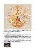 Sport, Botenstoffe und Hormonproduktion - Seite 2
