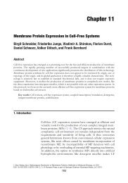 Membrane Protein Expression in Cell-Free Systems