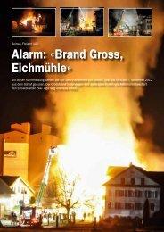 Einsatzbericht Brand Eichmühle - FW-Beinwil