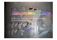 Download pdf-Datei: 1.106 KB - Österreichische Wachkoma ...