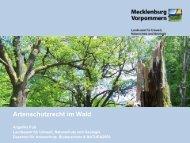 Powerpoint Master MV - Landesamt für Umwelt, Naturschutz und ...