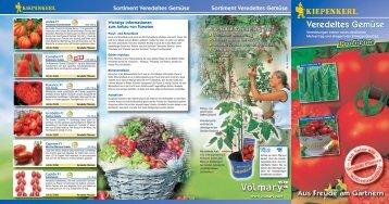 Kiepenkerl Profi-Line Pflanzen Veredeltes Gemüse - Volmary