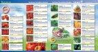 Kiepenkerl Profi-Line Pflanzen Veredeltes Gemüse - Volmary - Seite 2