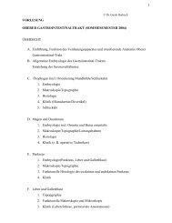 1 VORLESUNG OBERER GASTROINTESTINALTRAKT ...