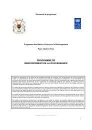 programme de renforcement de la gouvernance - PNUD