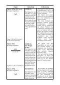 signal - Siebener Kurier - Seite 6