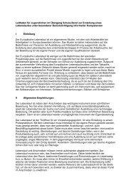 Leitfaden für Jugendlichen im Übergang Schule-Beruf zur Erstellung ...