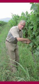 Schuchmann Wines Georgia - Page 2