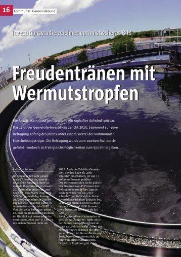 Investitionsstudie zeichnet optimistischeres Bild - Österreichischer ...