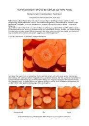 Harmonisierung der Struktur bei Gemüse aus Homa-Anbau