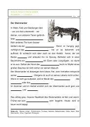 WALD, WILD UND WASSER Der Steinmarder In Wald, Feld und ...