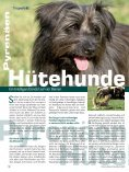 August - Naturheilkunde & Gesundheit - Seite 6