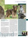 August - Naturheilkunde & Gesundheit - Seite 7