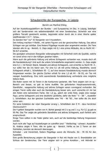 Bericht Europaschau Leipzig