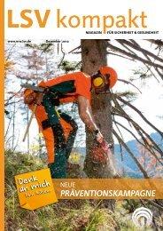 LSV kompakt Dezember 2012 - Sozialversicherung für ...