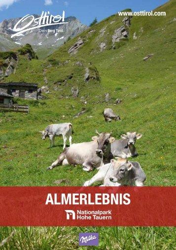 ALMERLEBNIS - Lila liebt Grün