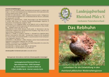 Das Rebhuhn - Landesjagdverband Rheinland-Pfalz Kreisgruppe ...