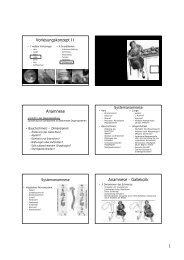 Vorlesungskonzept II Anamnese Anamnese - Gallekolik